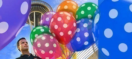 Balloon Planet Formed In 2004 And Based Seattle Is A Network Of Independent Companies Providing Delivery Decorating Service
