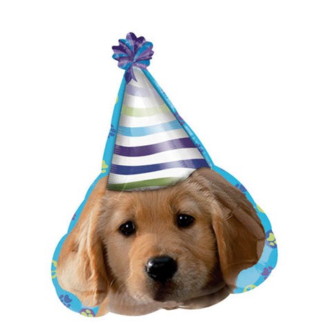 Birthday Balloon (Party Pup)