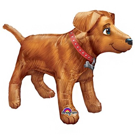 Gold Dog Ultrashape Balloon
